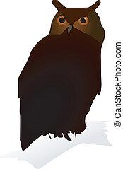 vectors owl
