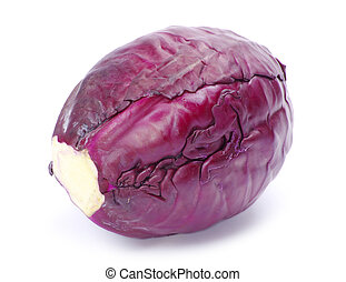 cabbage - A head of purple cabbage