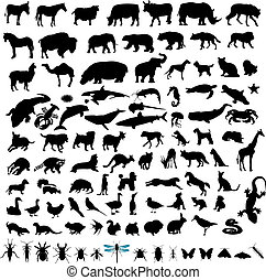 100 Animal Silhouettes - Set of illustrations of 100 Animal...