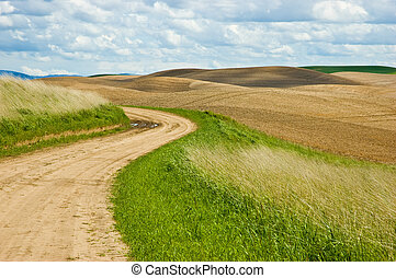 Country road - Dirt road winding through rolling farmland in...