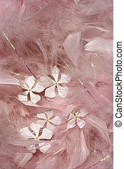 Fluffy pink feathers with white flowers background
