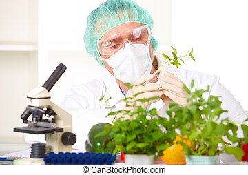 Researcher holding up a GMO vegetable in the laboratory -...