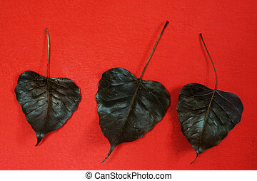 Black leaves on a red wall