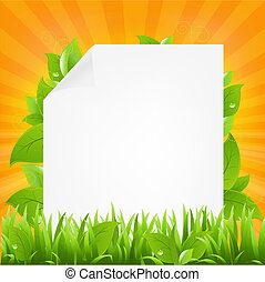 Paper With Beams And Grass