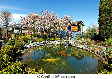 Spring time back yard with pond and blooming tree in Tacoma,...