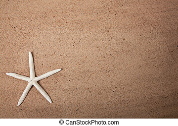 Sand background with a starfish - a Background made of sand...