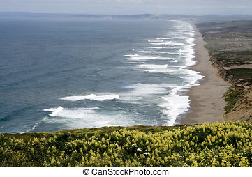 pacific shoreline - long stretch of Point Reyes coastal...