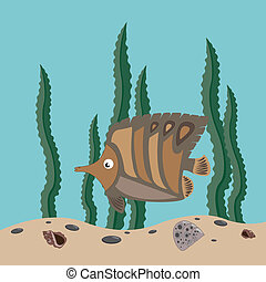 brown fish - funny brown fish swims in the sea