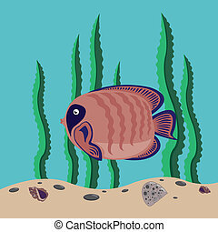 red fish - funny red fish swims in the sea
