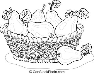 Basket with pears, contours