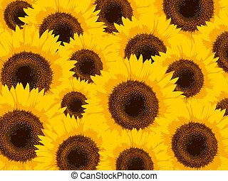 Stylized sunflowers - Illustration with stylized sunflowers...