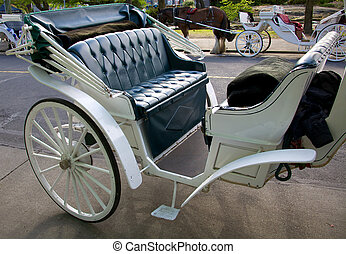 Horse carriage - A horse carriage waiting for customers