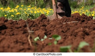 glina-2 - persons digs land by shovel