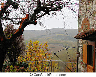 The Tuscan Chianti countryside through a tree.