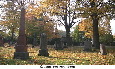 Beautiful Cemetery - Sunlit cemetery in autumn, with...