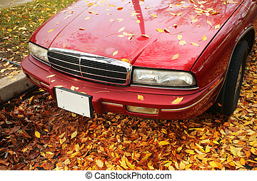 Old car on yellow autumn leaves.