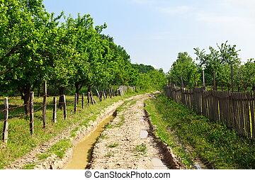 Muddy rural road in a garden