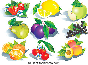 Fruits. - Juicy fruits. Vector art-illustration on a white...