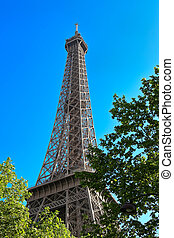 Eiffel tower among the trees