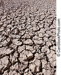 dried muddy river bed - cracked and dry mud in a river bed