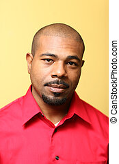 Handsome African American man - Portrait of a handsome...