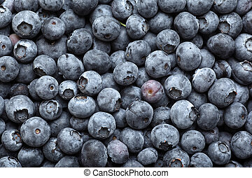 Blueberries - Many ripe blueberries background