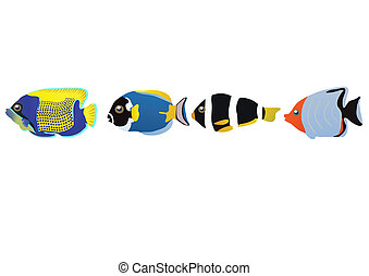 tropical fishes - Vector illustration of row of tropical...