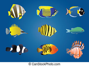 fauna - Vector illustration of exotic fishes on a blue...