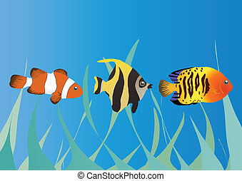fishes in the sea - Vector illustration of three tropical...