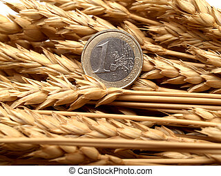 Euro and ears of wheat