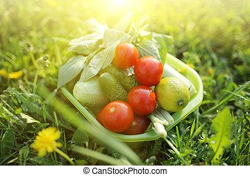 orgânica, alimento, Ao ar livre