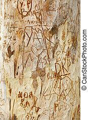 árvore, esculpido, tronco