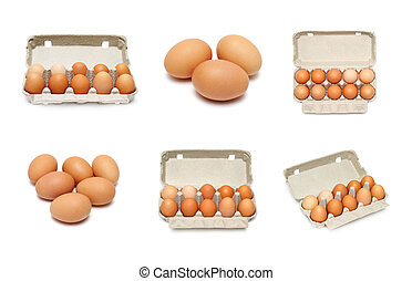 eggs set isolated on a white background