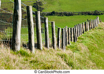 Wodden Posts with Metal Wire Fence in Cattle Field - Wodded...