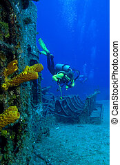 Russian warship wreck - Image is of a shipwreck, the...
