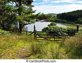Forrest track with a gate overlooking beautiful lake -...