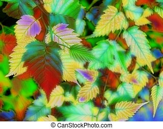 artistic altered of autumn leaves