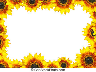 Sunflower Frame with place for your text