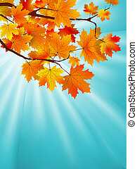 Red yellow fall maple leafs over sky. EPS 8