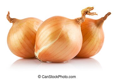 fresh onions vegetables