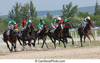 Horse race. - The race for the prize of the Afins...