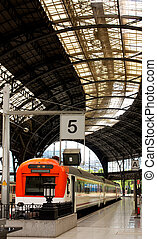 Trains in Barcelona France Station - Structure and roof of...