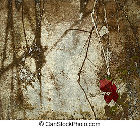 Grunge bougainvillea art background - Dark shadowy...