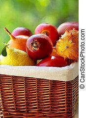 Basket of tropical fruits.