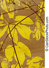 Yellow passion fruit leafs print on coconut paper textured background
