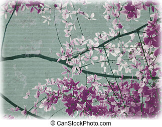 Purple and white flowers blossom