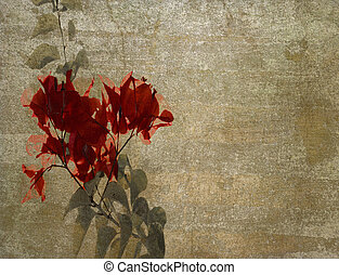 red bougainvillea on cloudy plaster