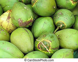 Coconuts in green shell - Grande Bahmas Island