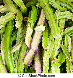 Winged Bean - Vegetable stall in Sri Lanka with exotic...