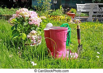 rosa, primavera, jardín,  wellingtons